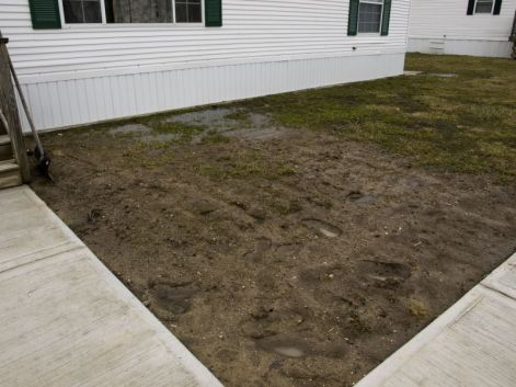 how to fix your muddy yard when you have dogs