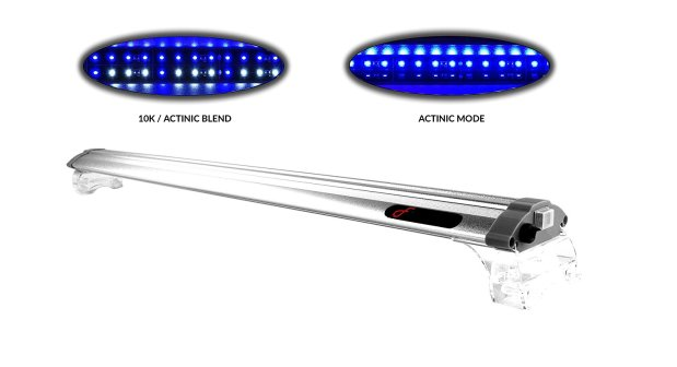 finnex led lights for saltwater tank
