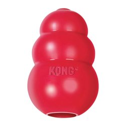 kong classic dog toy to stop chewing