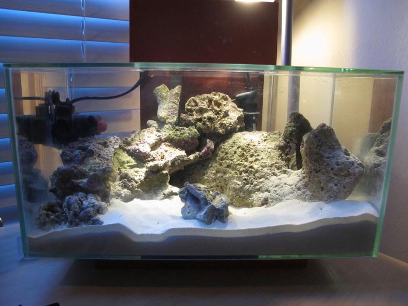 deep sand beds are better biological filters than shallow sandbeds